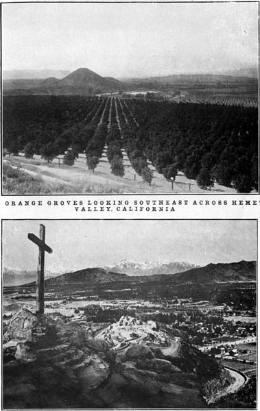 Orange Groves Looking Southeast Across Hemet Valley, California and View from Serra Memorial Cross, Huntington Drive, Rubuidoux Mountain, Riverside